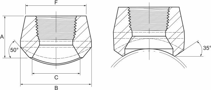 Threadolet catalog borsen borsenboru